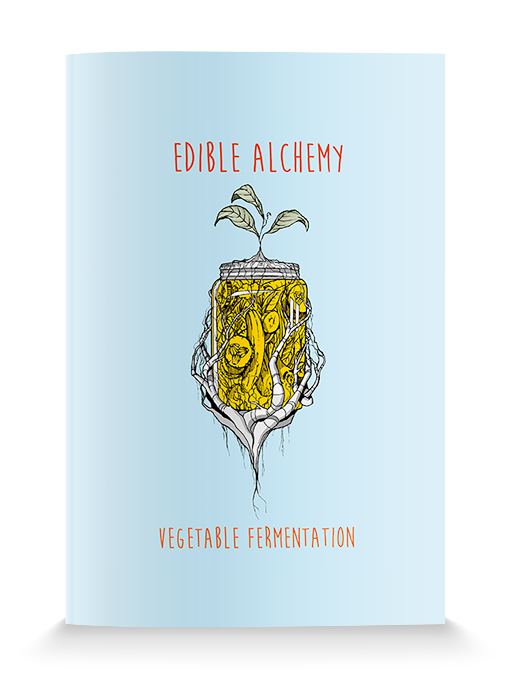Vegetable Fermentation Zine