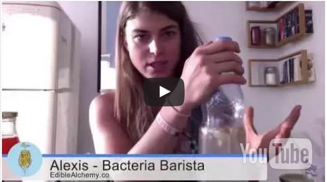 fermentation basics webinar
