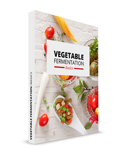 Vegetable Fermentation Basics Book Cover
