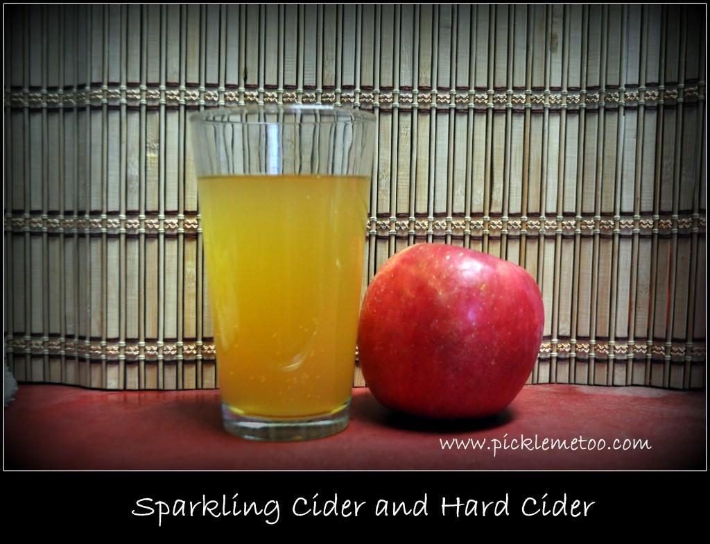 apple cider water kefir