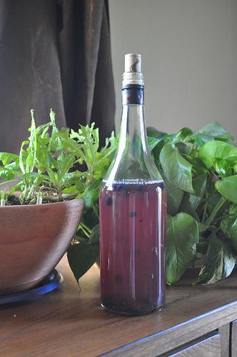 blueberry-lavender-kefir