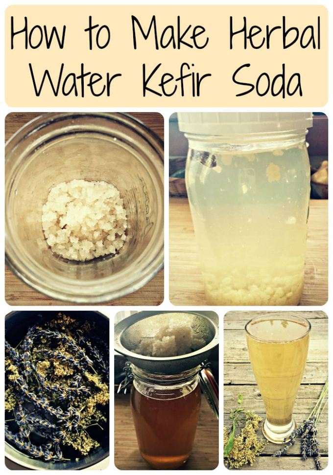 34 Water Kefir Recipes You Probably Havent Tried Yet