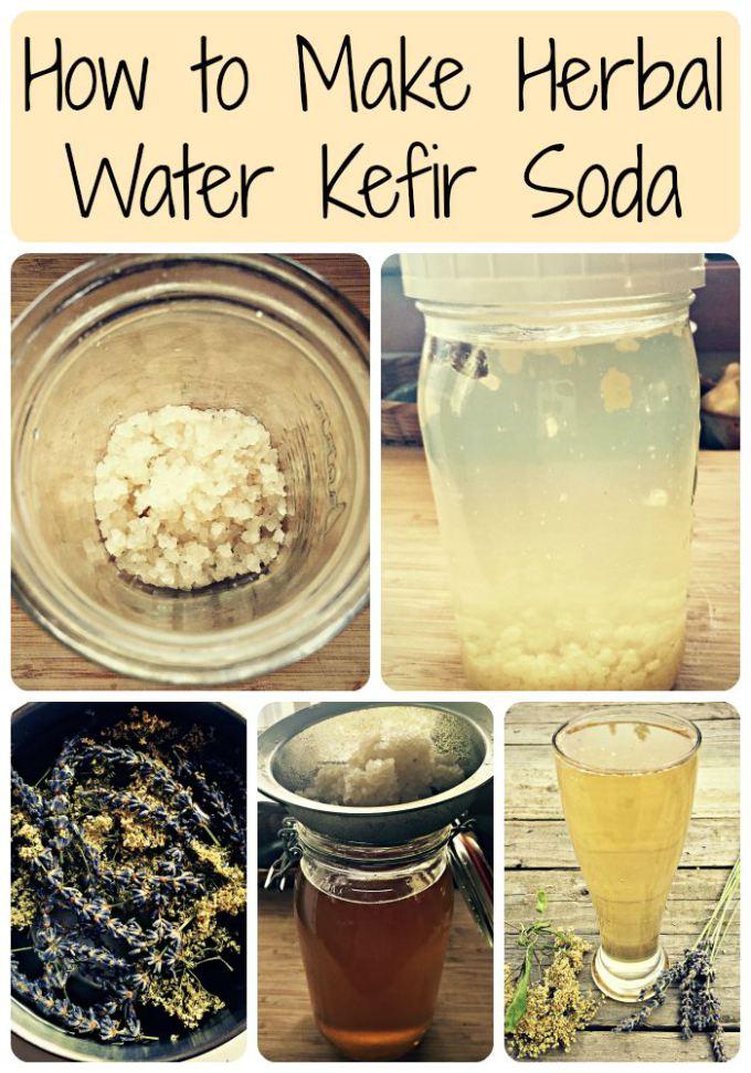 water kefir soda collage