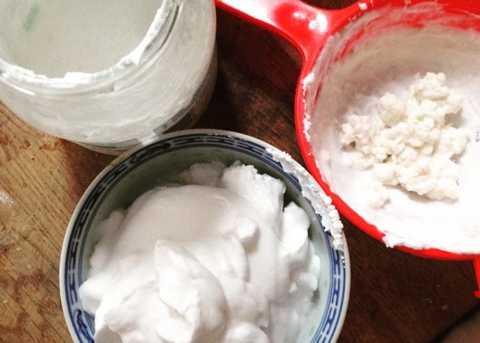 Milk Kefir – What & How to