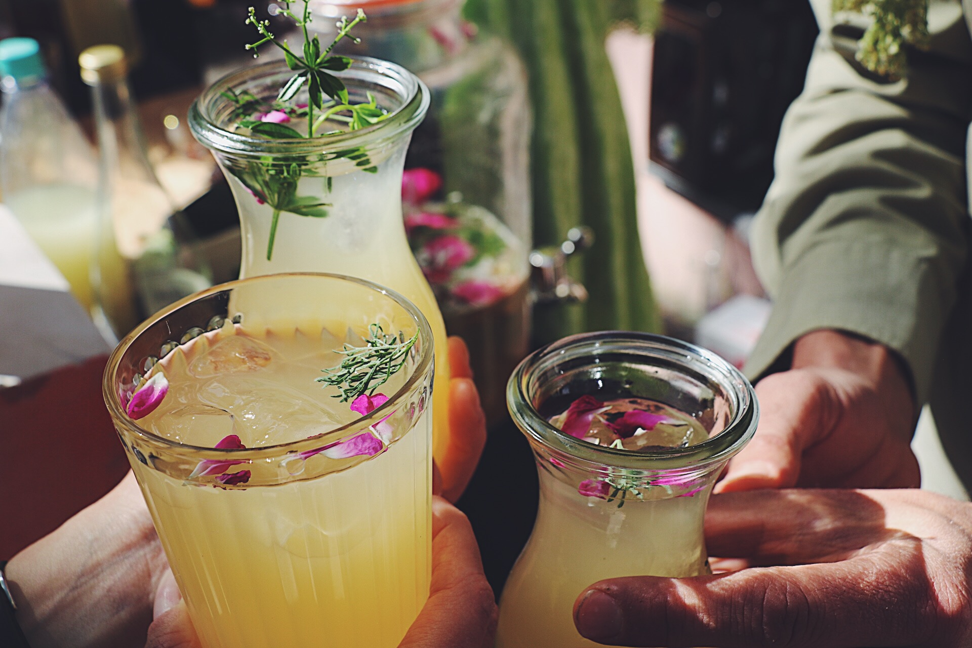 kombucha drinks with herbs and flowers