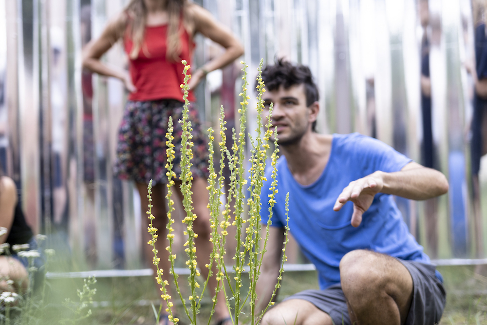 man and woman behind wild plants